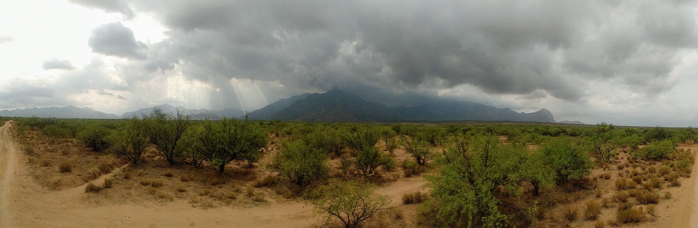 A monsoon storm rolls over distant mountains in the Arizona desert