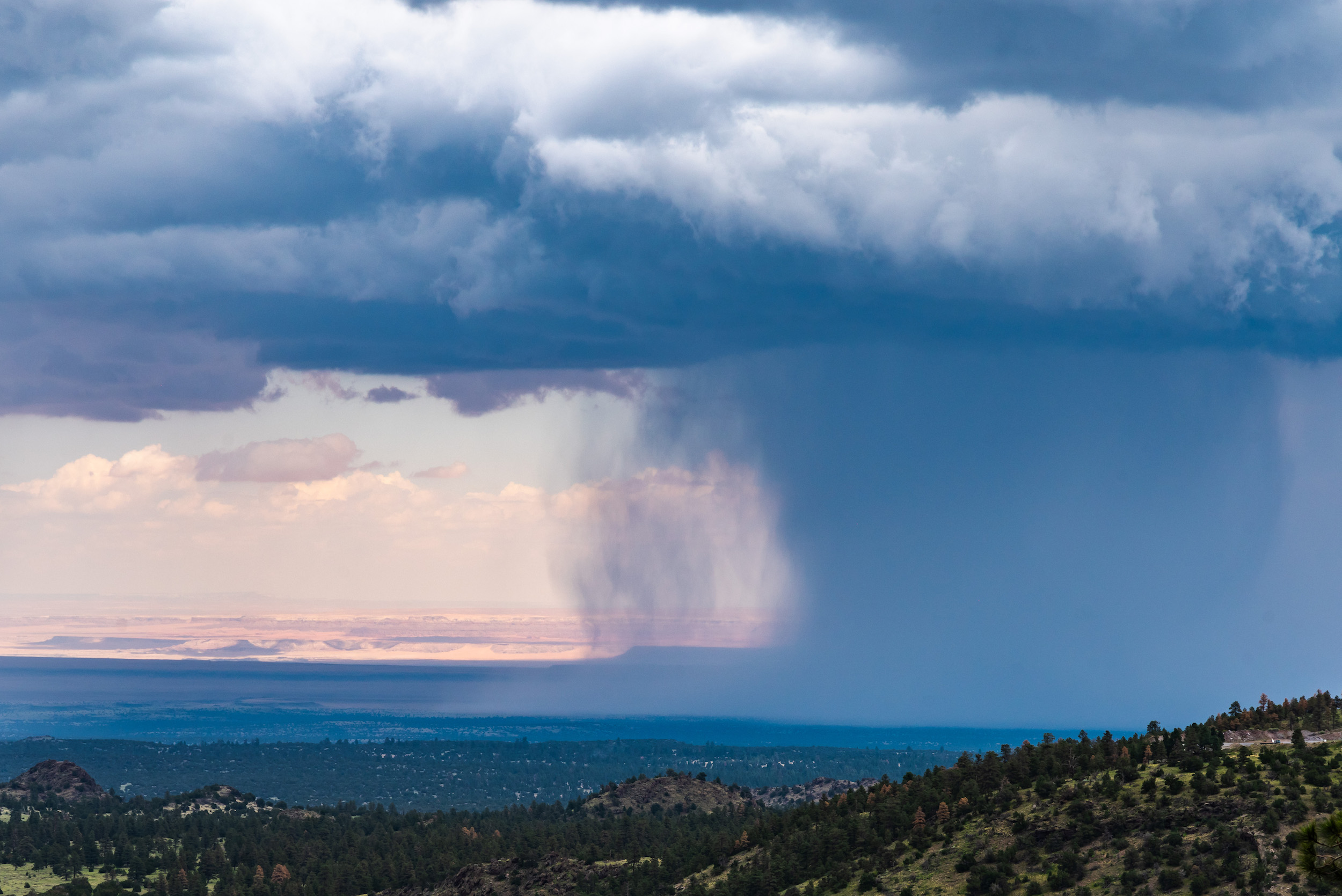 Monsoon rainstorms bring moisture from the tropics to the arid lands of the Desert Southwest, supporting a landscape that is much more biodiverse than most other deserts in the world.