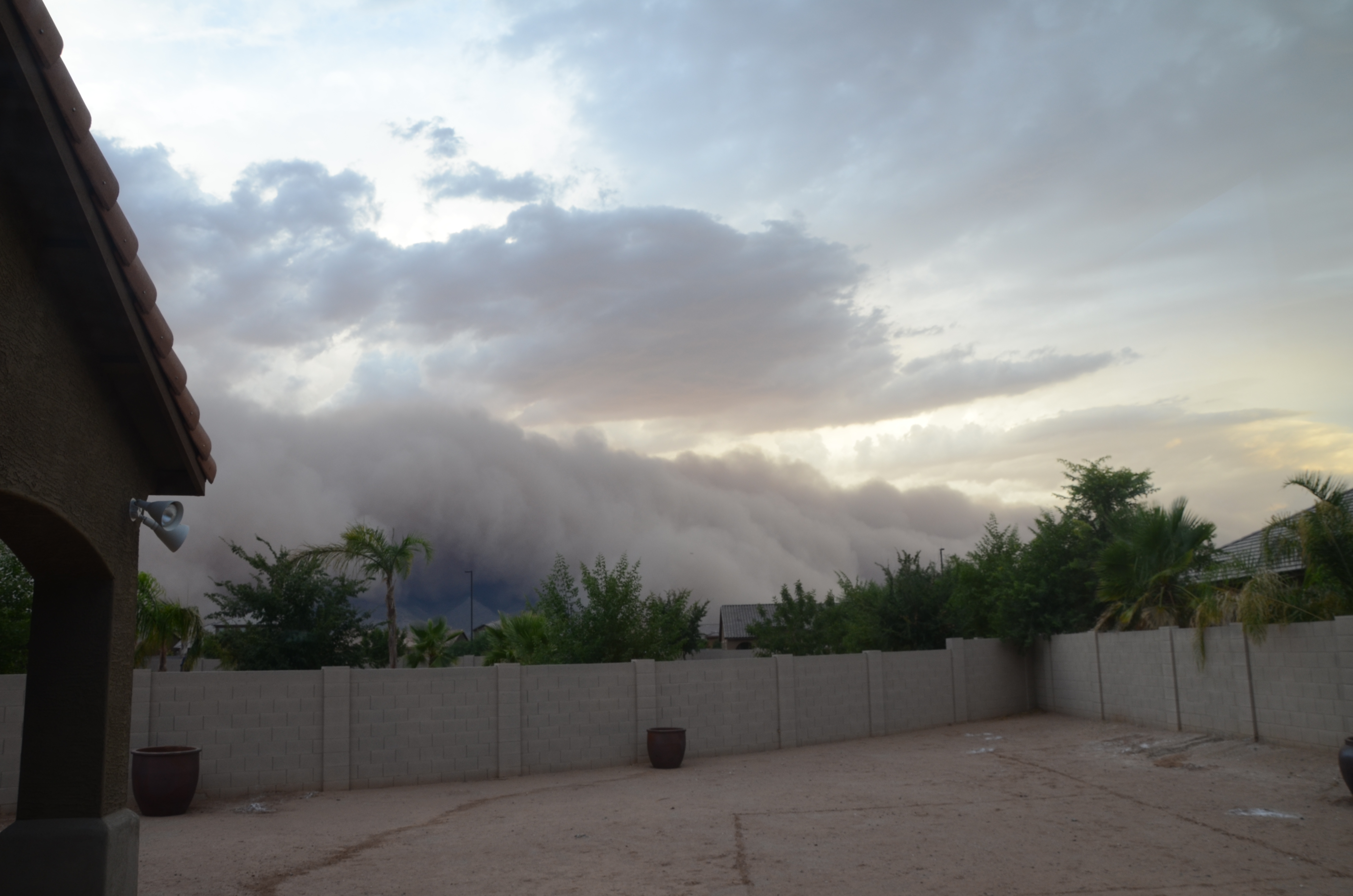 A haboob, or dust storm, barrels across the desert near Gilbert, Arizona, in July 2011. Valley fever is caused by the inhalation of fungal spores when soil is disturbed. About 60 percent of U.S. cases of occur in Arizona.