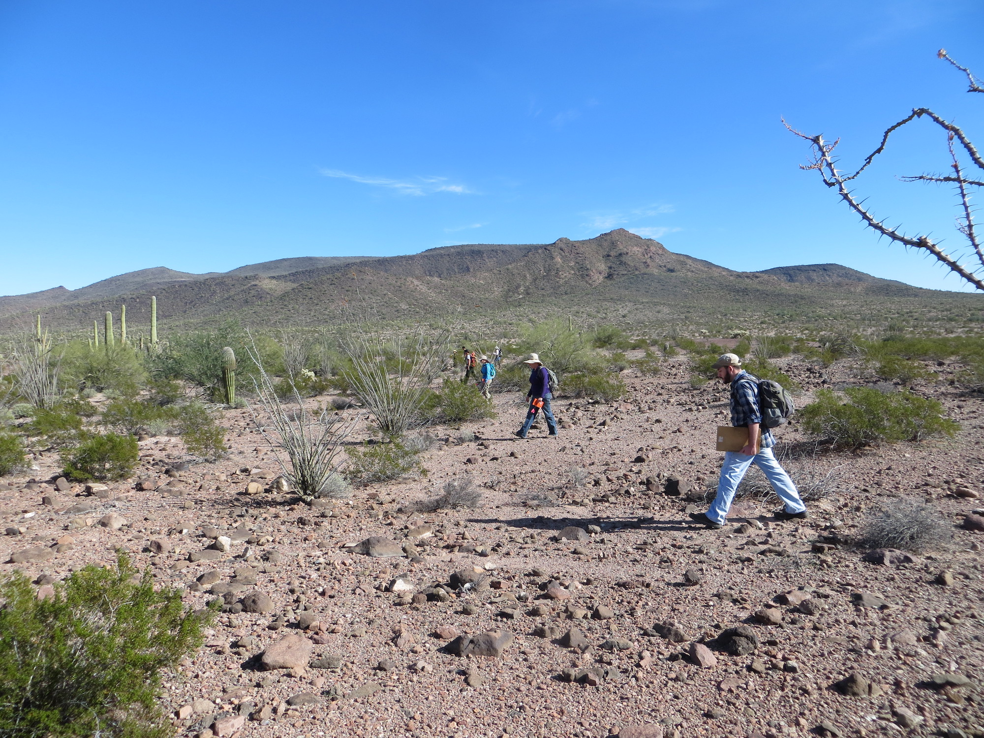 Researchers do an archaeological survey in search of trails to document. Once a trail was found, researchers would trace it as far as it would lead them.