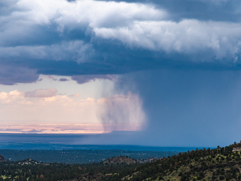 Monsoon rainstorms bring moisture from the tropics to the arid lands of the Desert Southwest, supporting a landscape that is much more biodiverse than most other deserts in the world. (Photo: Deborah Lee Soltez)