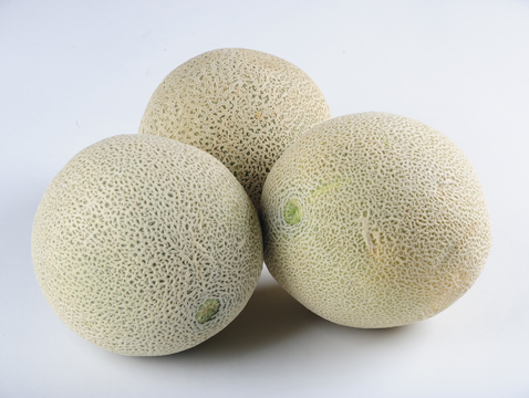 The cantaloupe's rough skin makes an ideal surface on which microbes can find a home. (Photo: Brandon Quester/News21)