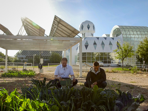 In 2017, Greg Barron-Gafford's research team began growing crops beneath 9-foot solar arrays at the UA's Biosphere 2. (Photo: Bob Demers/UANews)