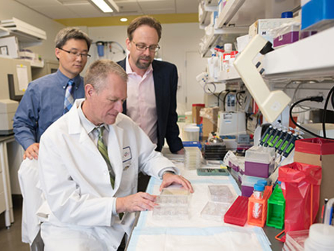 Frederic Zenhausern (seated) works with colleagues Dr. Kenneth Knox and Ting Wang (left) on research that combines their knowledge in engineering and medicine on a new model to study pulmonary diseases.