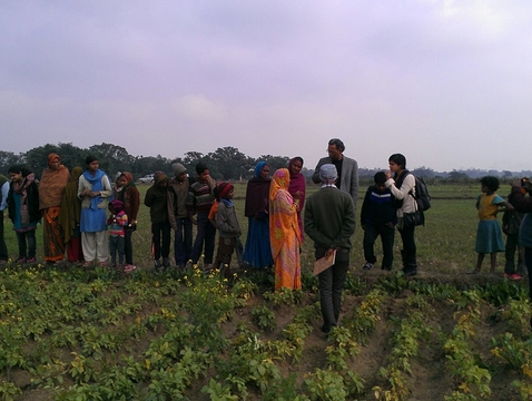 A field shot of people in the World Bank's women's anti-poverty program in India (Photo: Nammu Hassan)