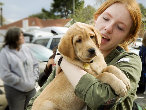Paws for the Cause, a 4-H club that is part of UA Cooperative Extension, raises dogs from the ages of 8 weeks to 14 months to be guide dogs for the blind or visually impaired. (Photo: Bob Demers/UANews)
