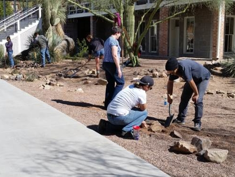 Students worked last spring as part of a water harvesting class offered by the Department of Soil, Water and Environmental Science. (Photo: Grant McCormick/UA Planning, Design and Construction)