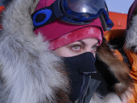 Alison Levine has climbed the highest peak on every continent and has skied to both the North and South poles.