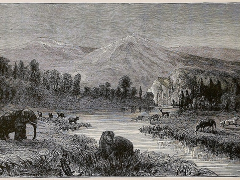 A wood engraving by Eduard Riou depicts a landscape view of the Pliocene. The image was etched in the late 1800s, when CO2 levels hovered around 295 ppm. (Image: Welcome Library/CC BY 4.0)