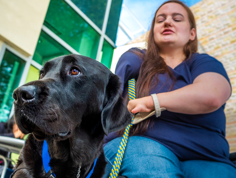 Shelby Smith was matched with her assistance dog Picasso through the nonprofit Canine Companions for Independence. UA researcher Evan MacLean is looking for ways to help organizations like Canine Companions identify promising assistance dogs sooner. (Photo: Bob Demers/UANews)