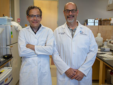 Neuroscientist Torsten Falk and neurologist Scott Sherman are teaming up to study the use of ketamine in patients with Parkinson's disease. (Photo: Nadia Whitehead)