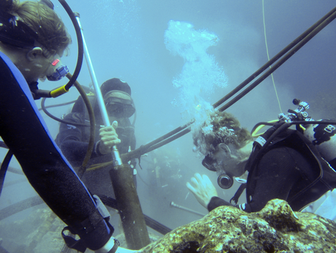 Diane Thompson (left), Roberto Pépolas (center) and Alexander Tudhope use a vegetable-oil-powered hydraulic drill to take a core from a Porites lobata coral head near Wolf Island in the Galápagos. (Photo: Jenifer Suarez, courtesy of the Cole lab)