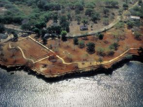 Aerial view of La Isabela, the settlement established by Christopher Columbus's second expedition. Photo credit: J.M. Cruxent, Florida Museum of Natural History, University of  Florida.