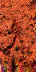 This is the closest view of the material underneath the Phoenix Mars Lander. This sample was taken from the top centimeter of the Martian soil, and this image from the lander's Optical Microscope demonstrates its overall composition.