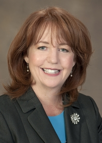 Laura Todd Johnson has been named the UA's vice president for legal affairs and general counsel.