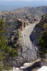 The book includes a guide for a drive up Mount Lemmon Highway, explaining the natural features at different stops. (Photo: Richard Brusca)