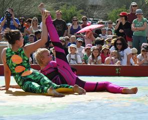 The Tucson Festival of Books also includes dozens of performances. (Photo: Patrick McArdle/UANews)