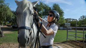 Ann Baldwin, a lifelong equestrienne, says the horse's sensitive sense of smell makes aromatherapy the perfect way to deliver natural calming agents.