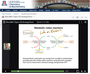 VoiceThread is one of the technologies used by Roger Miesfeld to interact with his online biochemistry students.