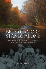 Big Sycamore Stands Alone