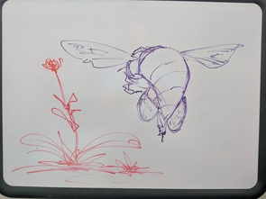 The whiteboard in Anderson's office serves both scientific and artistic purposes. (Photo: Daniel Stolte/UA News)