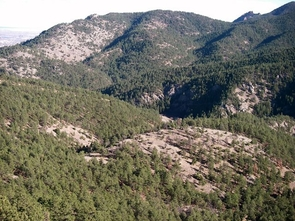 "The valleys of Betasso Preserve study site in the Rocky Mountains near Boulder, Colorado, illustrates how ""concentrated areas of soil moisture lead to increased forest productivity,"" says UA ecologist Tyson Swetnam. (Image courtesy of Boulder Creek CZO)"