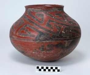 Kayenta polychrome vessel. (Photos of ceramics by Jannelle Weakly, Arizona State Museum)