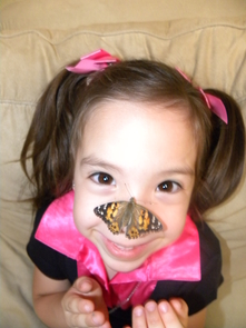 Four-year-old Anissa plays with a butterfly at the 2012 Insect Festival. (Photo: Vanessa Rivera Aldecoa)