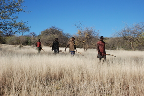 The Hadza use bows and poison-tipped arrows to hunt big game. (Photo: Brian Wood)