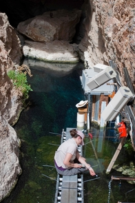 Graduate Student Ambre Chaudoin observes Devils Hole pupfish on a research platform installed above the pool that forms the cave entrance. (Photo by Olin Feuerbacher)