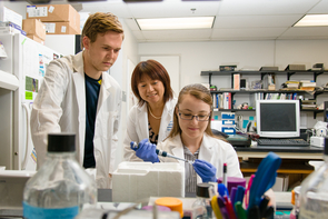 Researchers in the lab of Donna Zhang, professor of pharmacology and speaker at the NIEHS meeting, study environmental effects on the molecular mechanisms of liver cirrhosis. (Photo: Karin Lorentzen)