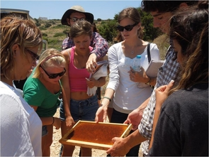 Students attend a beekeeping demonstration on the Greek island of Paros, which is famous for its honey.