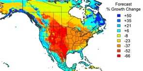 Projected change in forest growth rates for second half of this century. With the exception of coastal areas, growth rates are projected to go down throughout the North American continent. (Image: Noah Charney)