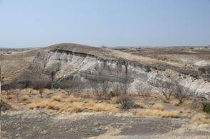 Lake deposits that are 3.5 million years old are exposed in outcrops near one of the northern Awash River Valley drill sites in Ethiopia. Drill cores here will document the environmental conditions in which Lucy and other members of her species (Australopithecus afarensis) evolved, lived and went extinct. (Photo: Roy Johnson)
