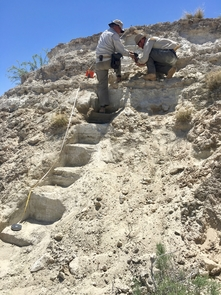 UA professor Vance Holliday (left) and UA doctoral student Brendan Fenerty work on the section of exposed lake deposits at New Mexico's White Sands National Monument. (Photo: Allison S. Harvey/Holloman Air Force Base)
