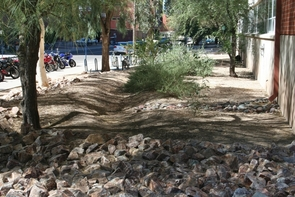 Campus water harvesting project