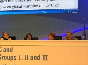Liverman (far right) with Debra Roberts, Valerie Masson and UA alumna Petra Tschakert at the IPCC 48th Session in Incheon, Republic of Korea. The meeting, held Oct. 1-5, brought the authors together with government delegates to negotiate the final wording of the Summary for Policymakers.