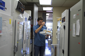 Pate checks the label on a tube of fruit flies. (Photo: Emily Walla/UANews)