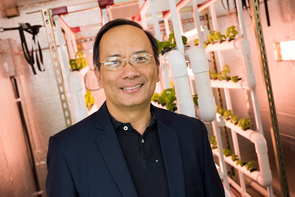 """""""In terms of vegetables, or some fruits like strawberries, it's more efficient to grow them in vertical farms, where you can recycle the nutrients and use  solar radiation for energy,"""" Joel Cuello says. """"Land in some cities is very expensive, but you can grow these vertical farms around cities, but at a distance that is quite manageable."""" (Photo: Bob Demers/UA News)"""