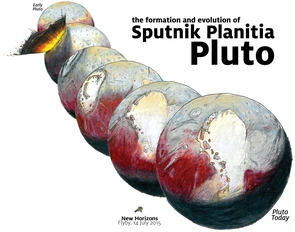 "Pluto reorienting: Sputnik Planitia (the left lobe of Pluto's ""heart"") likely formed in the aftermath of comet impact into Pluto. Sputnik Planitia formed northwest of its present location, and reoriented to its present location as the basin filled with volatile ices. (Illustration: James Keane)"