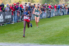 Elvin Kibet (Photo courtesy of Arizona Athletics)