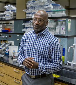 Rick Kittles joined the UA in July 2014, bringing with him years of expertise in a fascinating field of study. (Photo: Bob Demers/UANews)