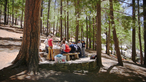 Students gather in Mount Lemmon's Marshall Gulch, where they handle insects under the guidance of a UA Sky School student instructor. (Photo: Bob Demers/UANews)