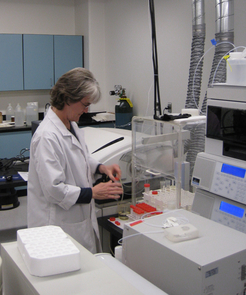 Caption: ALEC Research Specialist Mary Kay Amistadi prepares calibration standards for the inductively coupled plasma mass spectrometer, which measures trace levels of metals such as arsenic and lead in drinking water, wastewater and soil extracts. (Credit: Courtesy of the Arizona Laboratory for Emerging Contaminants, UA)