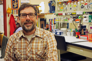 Matthew Cordes, UA professor of chemistry and biochemistry, studies the evolution of protein structure and function.