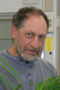 """Professor Marc Orbach: """"We don't yet know how the gene works, but what we do know is that without it Coccidioides won't cause the animal to get sick."""""""