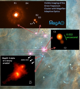 Equipped with the newly developed MagAO adaptive optics system, the Magellan Telescope revealed details about the Orion nebula. The background image, taken with the Hubble Space Telescope, shows the Trapezium cluster of young stars (pink) still in the process of forming. The middle inset photo reveals the binary nature of the Theta Ori C star pair. The bottom insert shows a different binary young star pair shaped by the stellar wind from Theta 1 Ori C.  (Photo credits: Laird Close and Ya-Lin Wu; NASA, C.R. O'Dell and S.K. Wong)