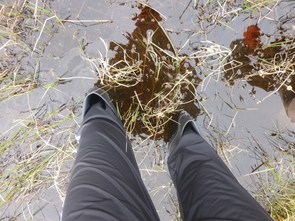 Rose Vining stands knee high in thawed permafrost water. (Photo courtesy of Rose Vining)