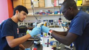 Rajan Vivek (left), of Horizon High School in Scottsdale, studied viral transfer efficiency between human fingers and various surfaces.