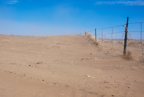 Sand dunes along the southern boundary of the Hopi Reservation in June 2013. (Photo: Dan Ferguson)